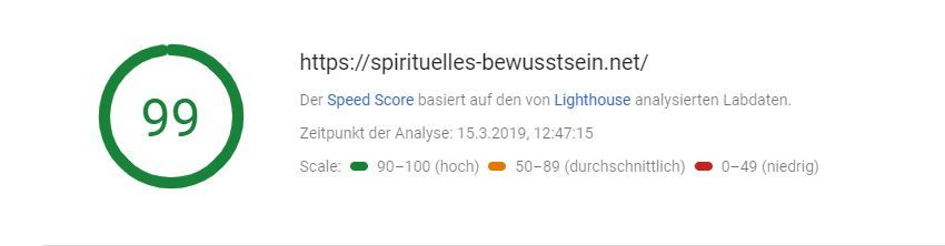 Pagespeed von 99 bei PageSpeed Insights